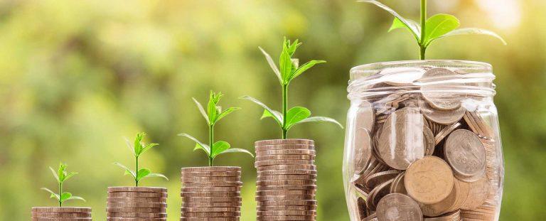 Tax declaration & annual financial statements